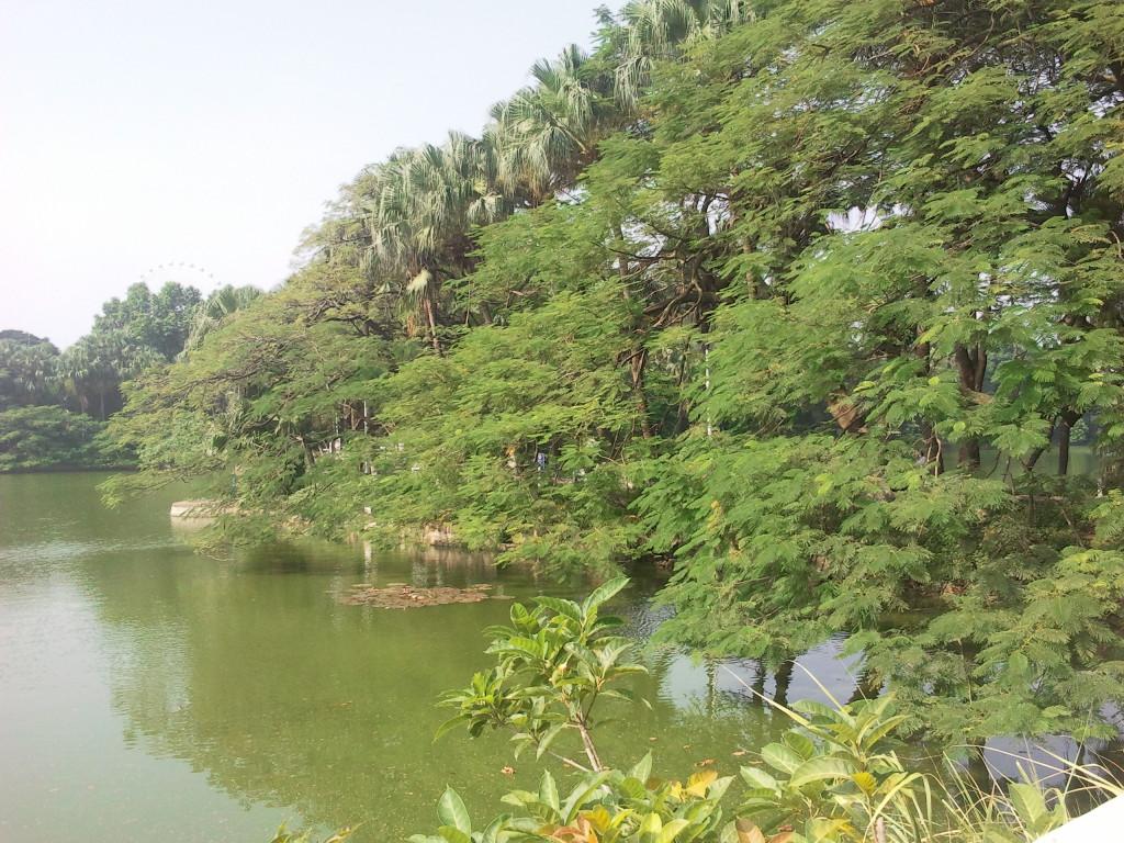 中山市人工湖