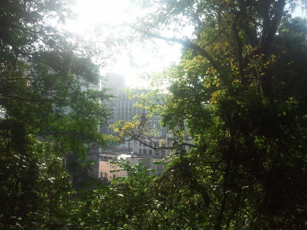 中山市烟墩山景