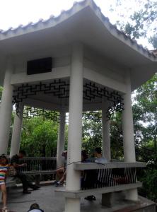 树木园登山径上的亭
